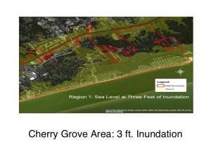 Cherry Grove: 3ft